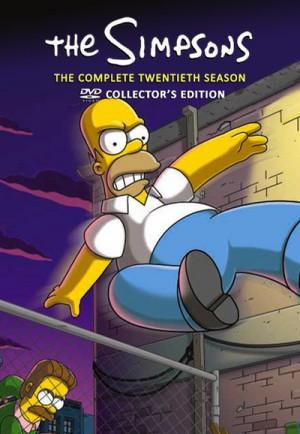 Simpsons: The Complete Twentieth Season