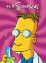 Simpsons: The Complete Sixteenth Season